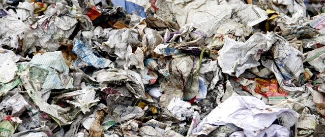 Paper Waste in Landfill